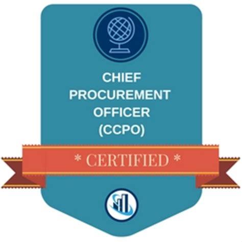 Stephane Bonneton - cv - Experienced procurement specialist